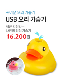 USB오리가습기