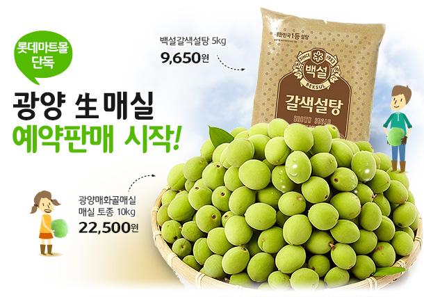 [롯데마트몰 단독]광양 生 매실 예약판매 시작!