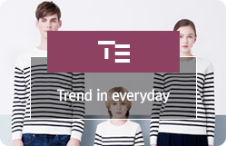 TE Trend in everyday