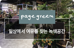 page green Book, Tea & Gardening