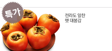 [후레쉬팜] 전라도 알찬 햇 대봉감 5kg