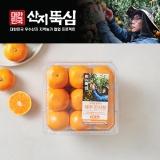 제주 진지향(1kg/1팩)