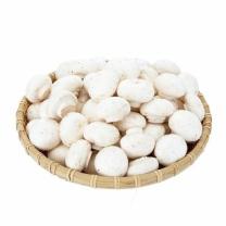 초이스엘 양송이 버섯(봉)