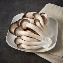 부침용느타리 버섯(150G/팩)