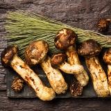 국내산 자연송이 버섯(200g)