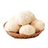 노루궁뎅이 버섯 기획(6입)