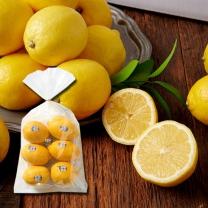 칠레산 레몬(6-10입/봉)