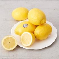 칠레산 레몬(1개)