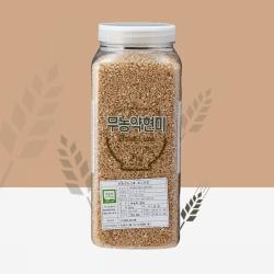 무농약 현미(2KG)