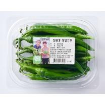 진주 친환경 매운고추(100G/봉)