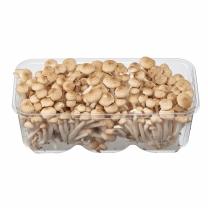 만가닥 버섯 (갈색)(400G)