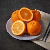 칠레산 오렌지(개)