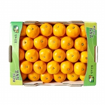 쪼꼴락 한입 감귤(4KG/박스)