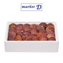 국산 생물 가리비(BOX)
