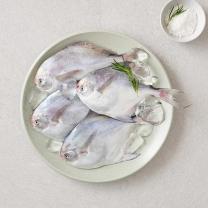 국산 생물 병어(마리)