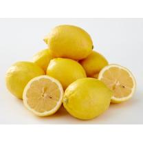 칠레산 레몬(개)
