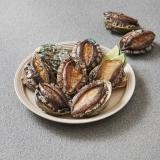 活 전복(3마리/대/국산)