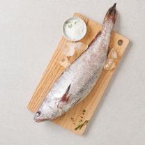 국산 민어(해동)(마리)