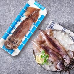 원양산 오징어 (해동)(마리)