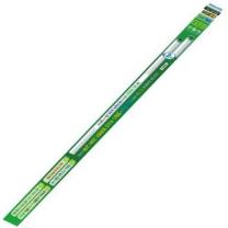 필립스 직관 형광등 (주광색)(32W*2입)