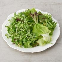친환경 5종 샐러드채소(120G)