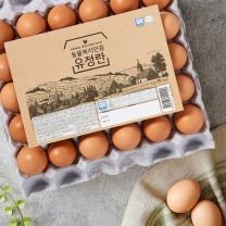 동물복지유정란(대란)(30입/1,560G)