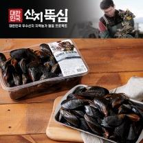 피홍합(진주담치/팩)(900G/팩)