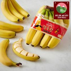 감숙왕 바나나(1.2KG내외)