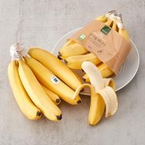 해빗 유기농 바나나(봉)