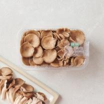 고기느타리버섯(팩)