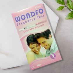 원포 임신 테스트기(3개)