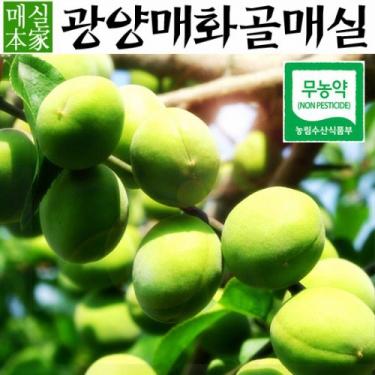 ★광양매실 예약배송 시작★<BR>밥도둑 장아찌 담그세요~