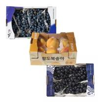 포도&복숭아! 롯데마트몰에 드리는 맛있는 과일