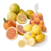 오렌지/자몽/레몬