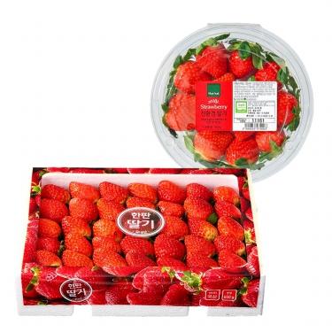 맛있는 제철과일 딸기!
