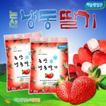 [하늘땅담은]알알이 시원한 논산 냉동딸기 2.5kg