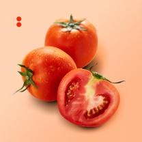 [아리알찬]속이 꽉찬 일반 완숙 토마토 5kg(특)