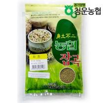[물맑은양평쌀]청운농협의차조500g