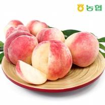 [농협] 천년의맛 복숭아 3kg(15과내외)