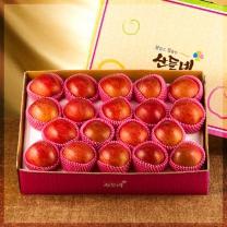 [달고 맛있는 영주사과]산들네 꿀맛 사과 10kg 38과내외
