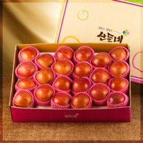 [산들네] 꿀맛 사과 10kg 44과내외