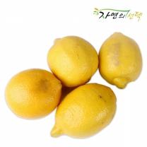 [자연의선택]새콤한 초이스 레몬 2kg (16과내)