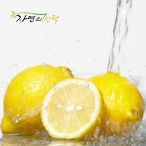 [자연의선택]새콤한 펜시 레몬 3kg (25과내)
