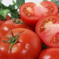 참살림 완숙토마토 5kg(4~5번과)