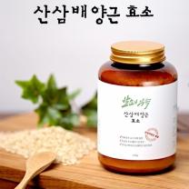 발효의약속 산삼배양근효소 250g
