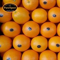 [아리알찬]퓨어스펙 블랙라벨 오렌지 1.3kg(10개)