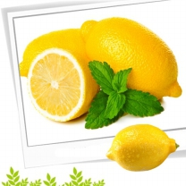[참다올]fresh 레몬(2kg 18~20개입)