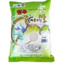 [안정농협/산지직송] 2018년 영주 저온 추청쌀 5kg