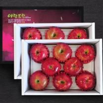 [정드림] 과일 선물세트 사과 2.5kg (9과내외)/총2박스