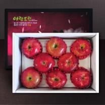 [정드림] 과일 선물세트 사과 2.5kg (9과내외)